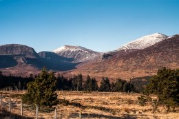 Mourne Mountains -9843