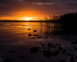 Sunset at Lough Neagh - 3843