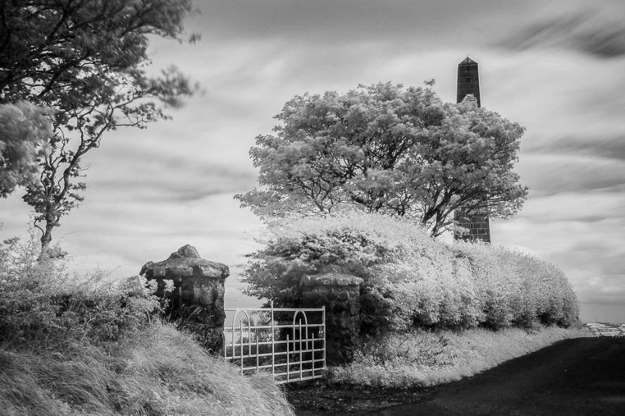 Knockagh Monument - 4736