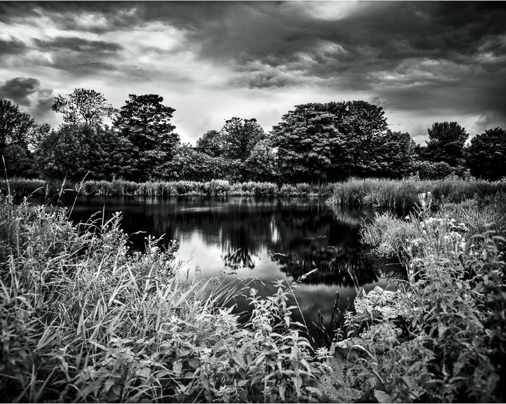Duck Pond, Carrickfergus (Infrared) - 3275