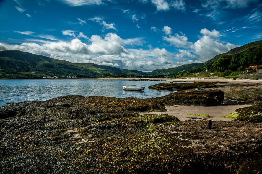 Waterfoot - 8286