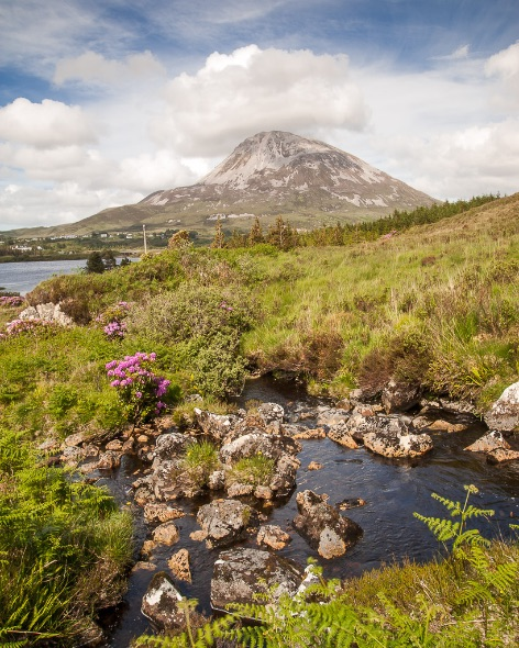 Mount Errigal - 5019