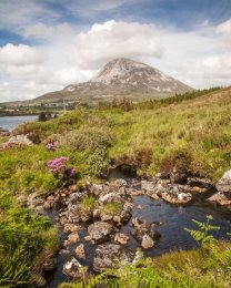 Mount Errigal - 5019