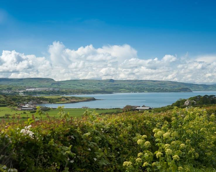 View over Islandmagee - 7263