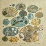 Seashore blue-sand