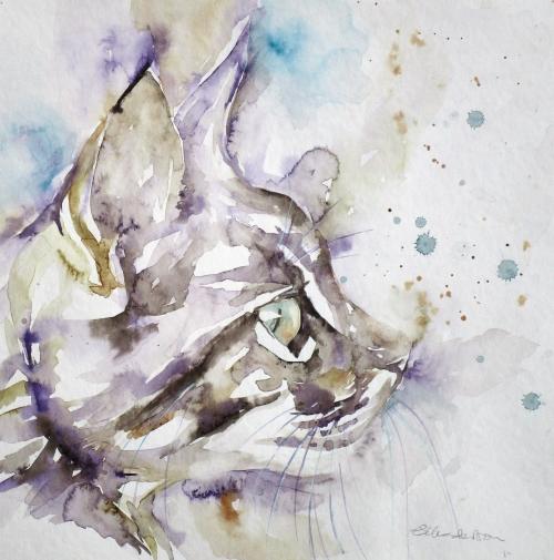 Italian puss
