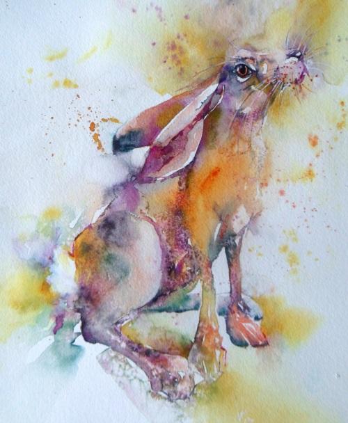Gazing hare