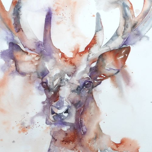 Stag at dusk