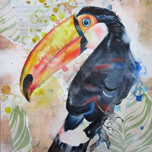 Toucan collage
