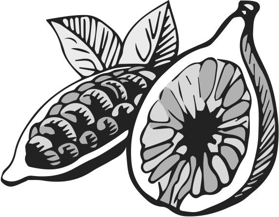 Dalmatia cocoa fig spread