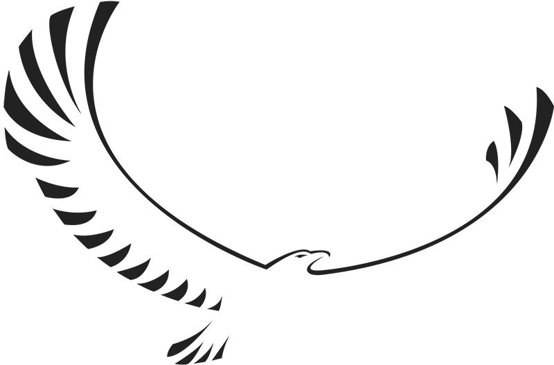 Eagle logo  Avalon Financial Services