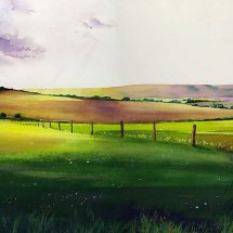 Sussex early evening light