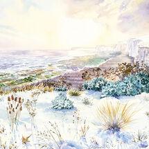 Winter Sun at Birling Gap