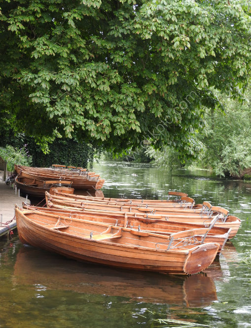 boats at Dedham