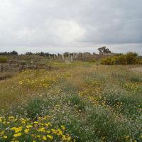 N Cyprus 068