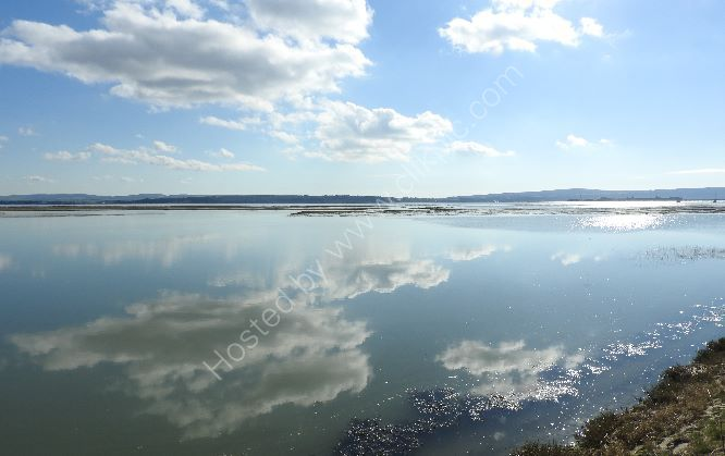 the Solent from Keyhaven Marshes