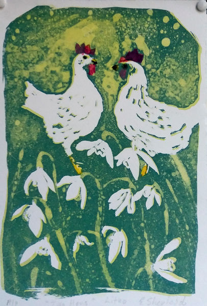 hens with snowdrops lithograph and watercolour £45