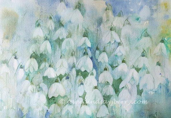 Snowdrops in Abundance