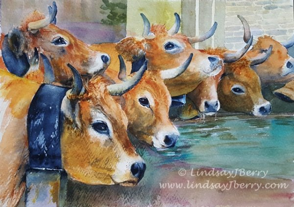 Watercolour art work depicting Cows drinking at the village fountain during the transhumance