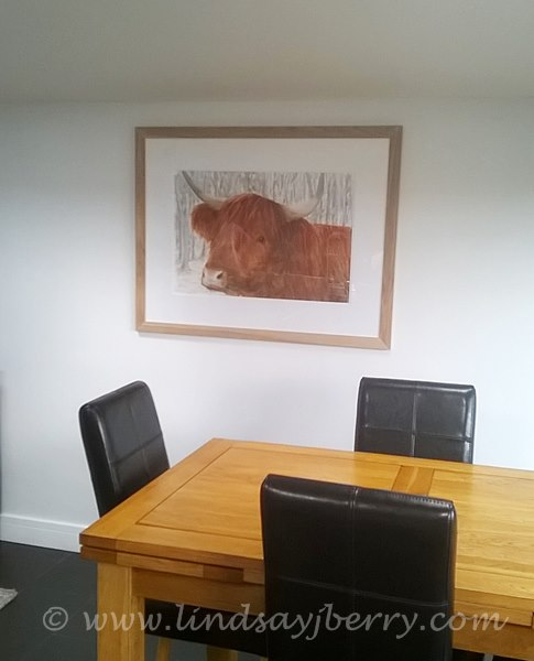 Commissioned Highland Cow in Snow now hung in his new home