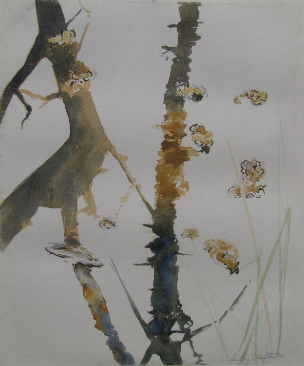 Oak Reflections.Strensall series (sold)