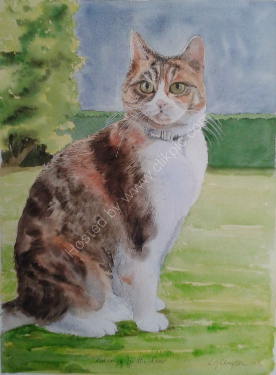 Pet portraits in watercolour. Commissions available.