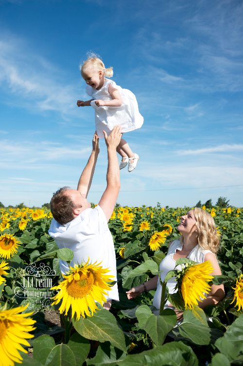 Fun in the Sunflowers