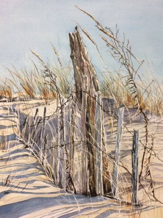 Dune fence (SOLD)