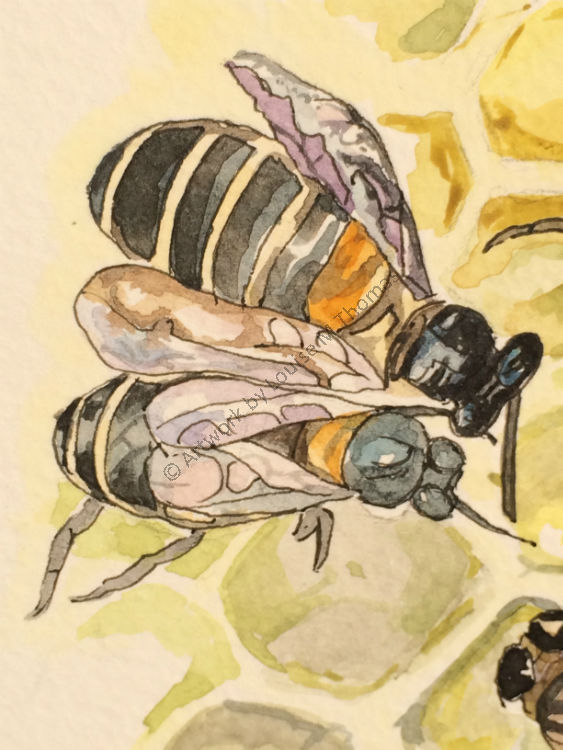 Elliott's bees (detail) (private collection)