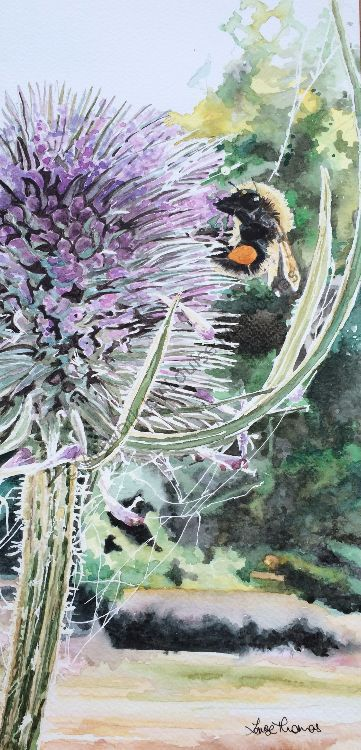 Sarah's Thistle (SOLD)