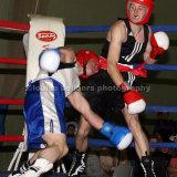Boxing TVABC
