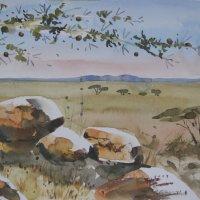 Serengeti kopje 1