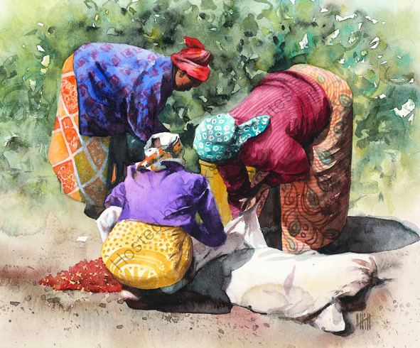 Women collecting coffee