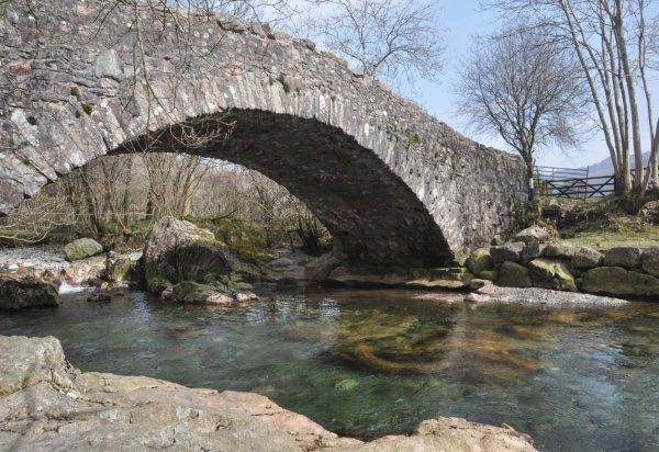 2014 Doctor Bridge