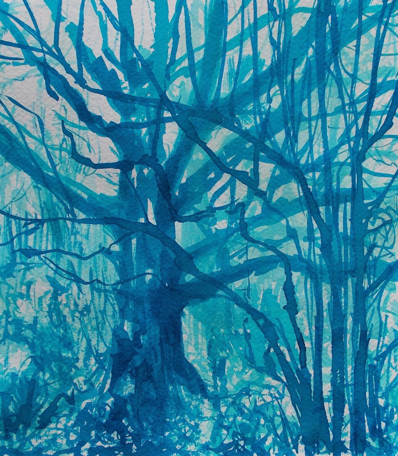 Blue Oak and Hazel