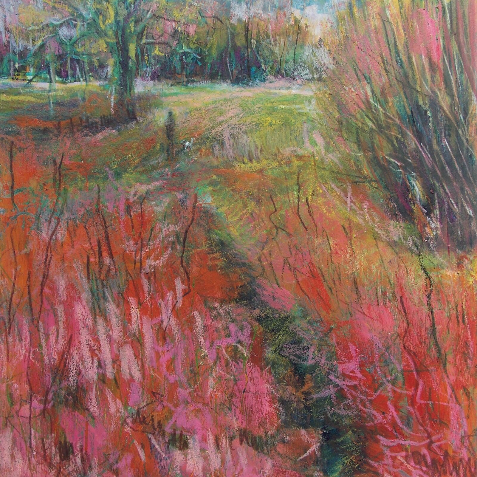 Somerset Field with Red