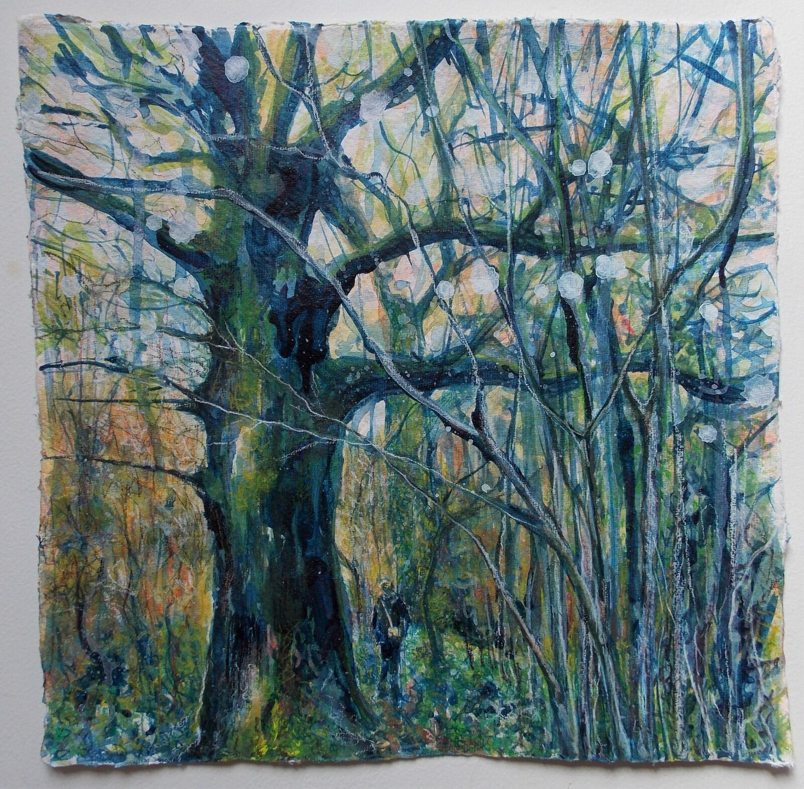 Somerset Oak and Hazel