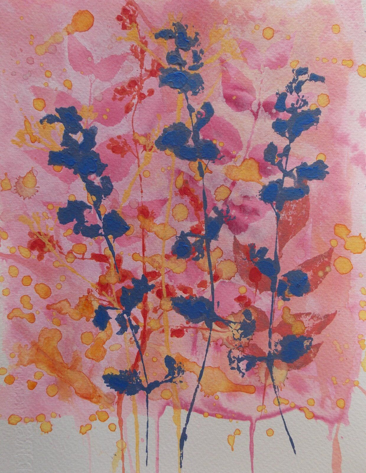 Blue Catnip on Pink