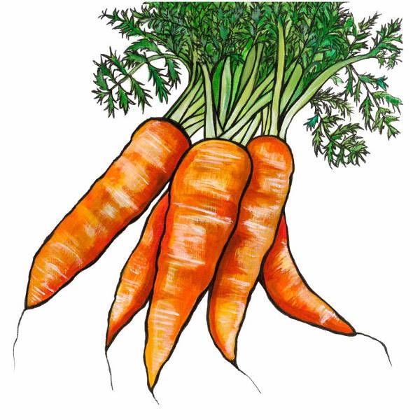 Carrots Mini Print