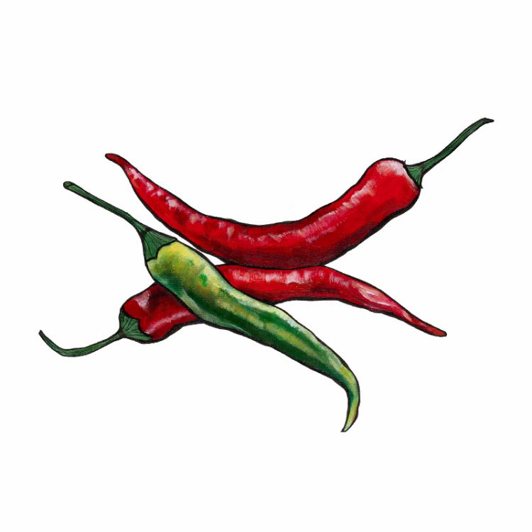 Trio of Chillies Mini Print