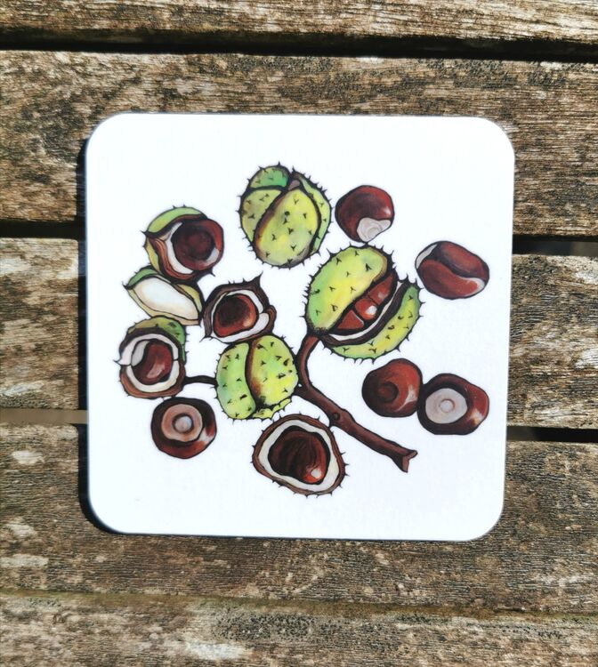 Conkers Coaster