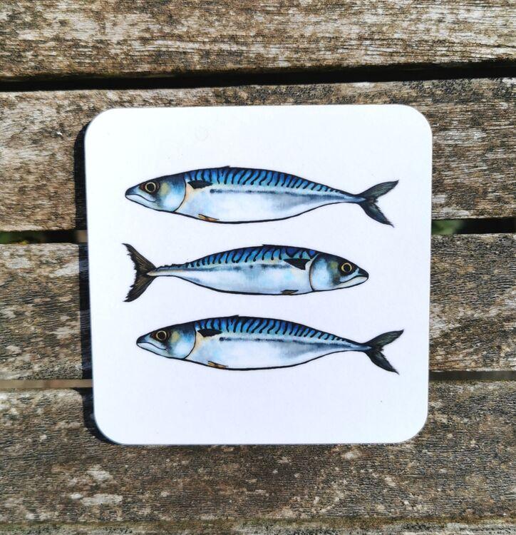 Mackerel Coaster