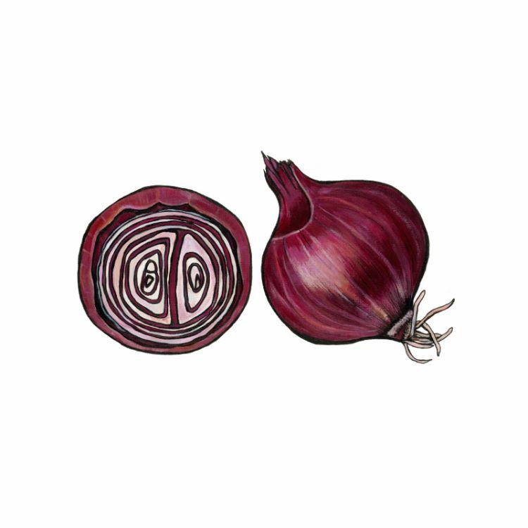 Red Onion Mini Print