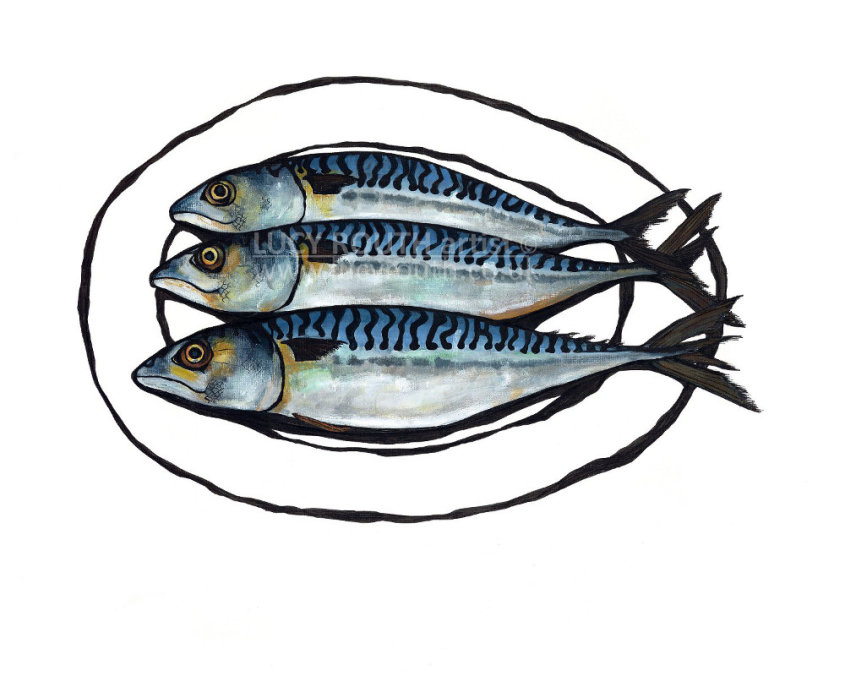 Three Mackerel (EDITION SOLD OUT)