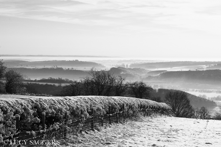 Looking towards Gilling from Ampleforth Beacon, January 2013