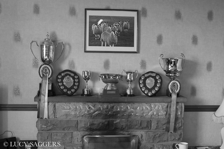 Mantlepiece, Breck House Farm, Bransdale, March 2014