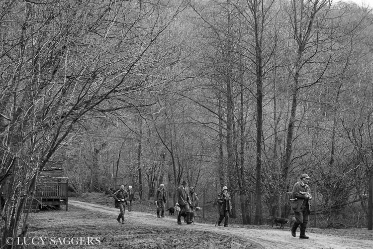 The beaters return, Duncombe Park, January 2014