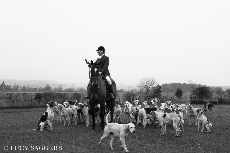 Master of Foxhounds, Helmsley, January 2014