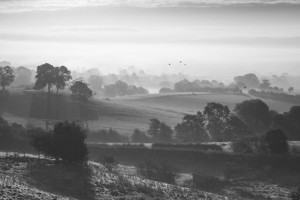 Early autumn morning looking over Ampleforth, October 2012