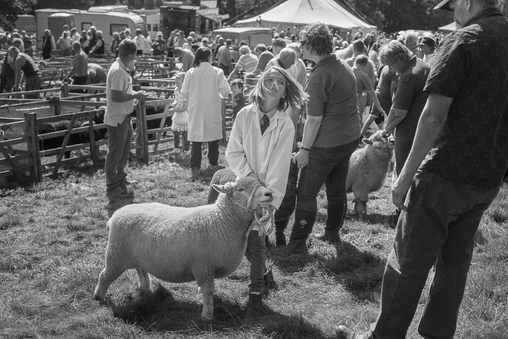 Girl showing sheep, Farndale Show
